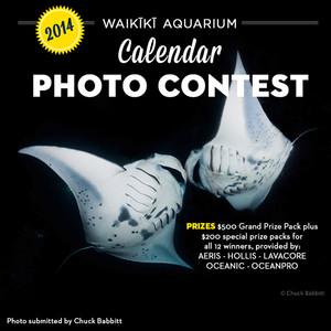 Waikiki Aquarium Photo Contest