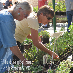 Fall Fundraising Plant Sale