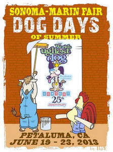 Dog Days Of Summr