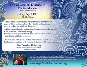 Tibetan Medicine: Causes of Disease
