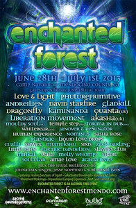 Enchanted Forest Music Festival